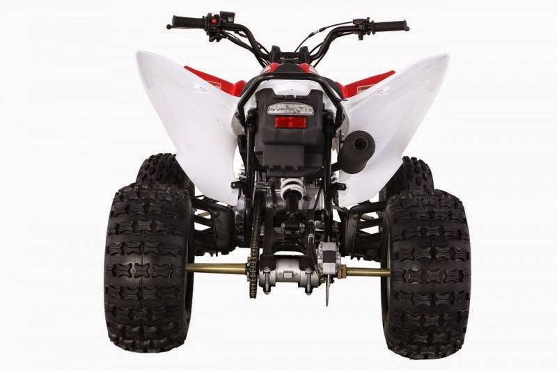 125cc Raptor Style Series 2 Feral Sports Quad Bike -Red Rear