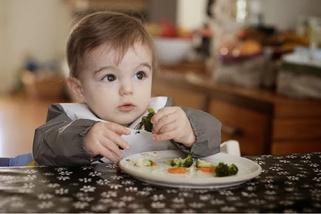 bagaimana menyedaikan makanan bayi