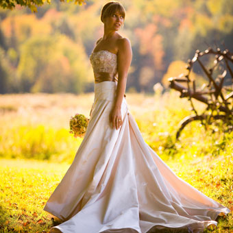 Velvet Dress on Velvet Wedding Dress   Wedding Dresses  Simple Wedding Dresses  Prom