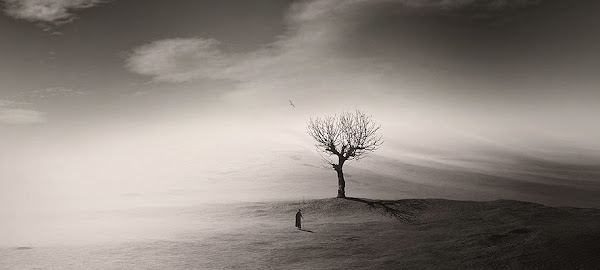 George Christakis PHOTOGRAPHY
