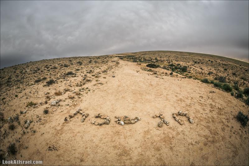 LookAtIsrael.com: Песах (israel  пустыня природа негев )