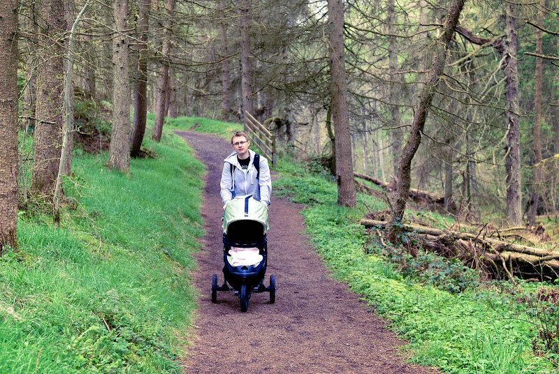 Irlandia Płn -- Glenariff Forest Park..