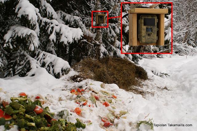 Scout Guard SG560K-8M riistakameran kuvausjärjestelyt