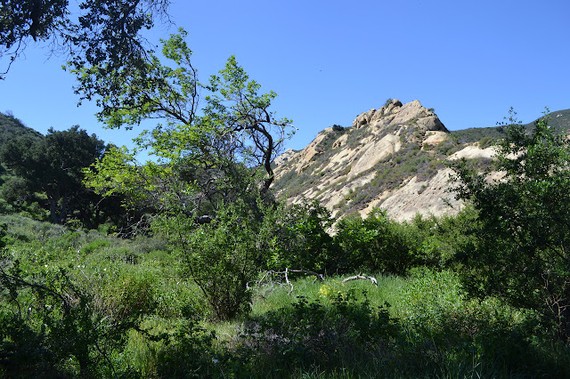 huge outcrop of rock
