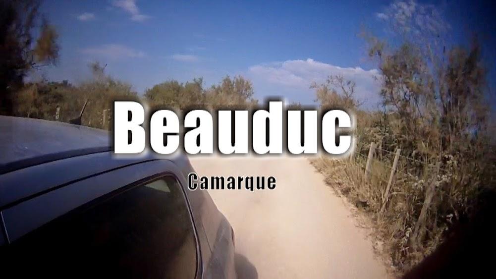 beauduc camarque 2013
