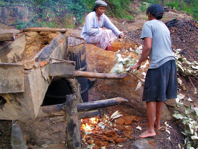 صور من مدغشقر Madagascar 14865606349