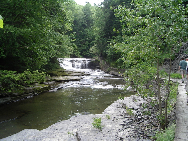 a few feet of wide falls
