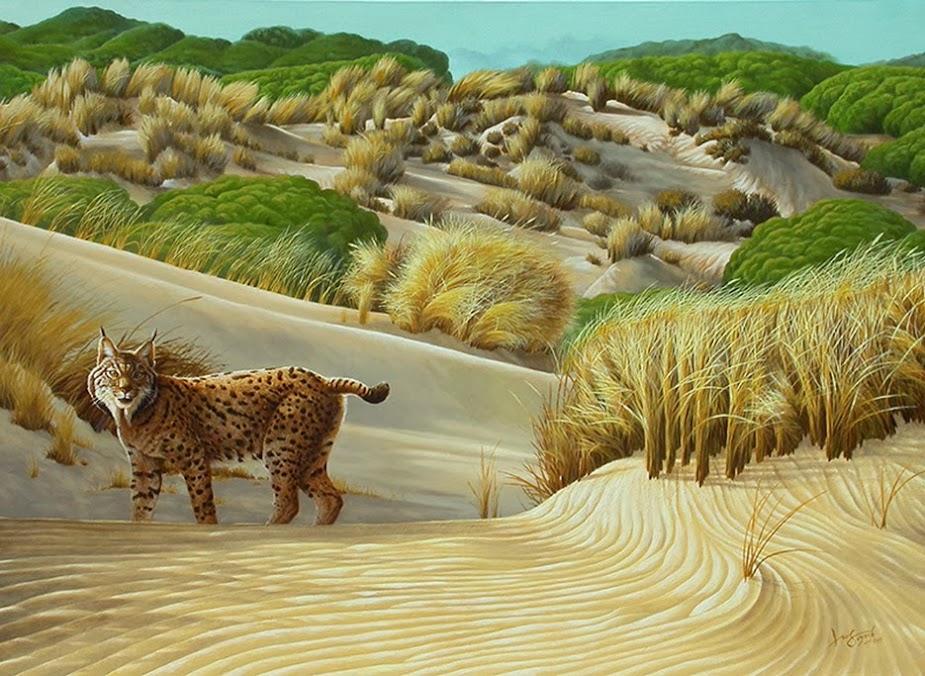 luis Sogorb pintura en oleo,Lince entre dunas