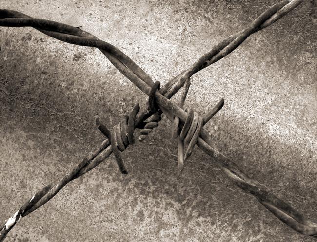 Азбуката в снимки от Аба Рихман - X