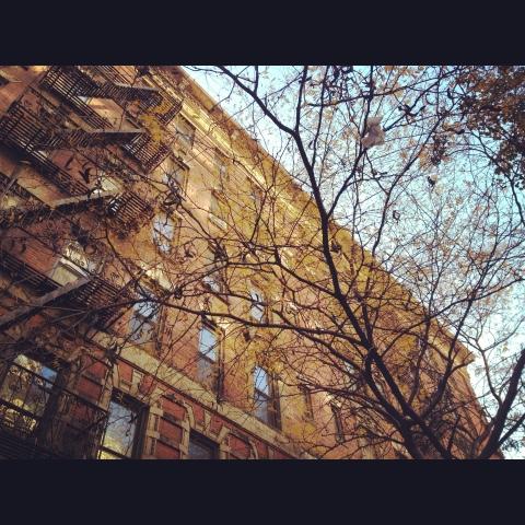 New York – where dreams come true