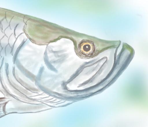 Ron Fish