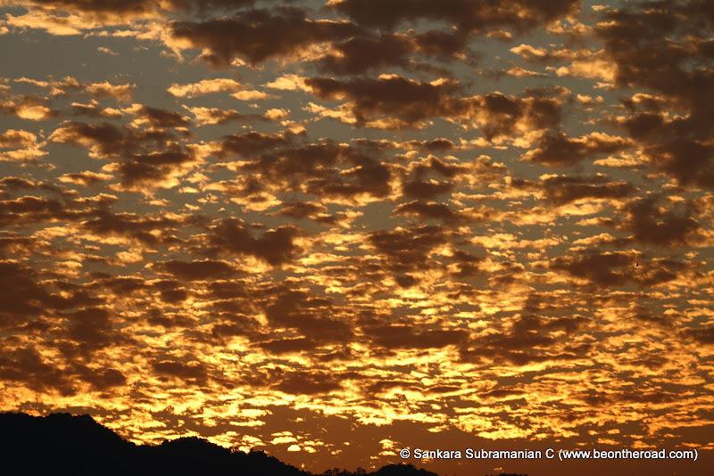 Vivid and Vibrant Evening Sky at Kaziranga - 4