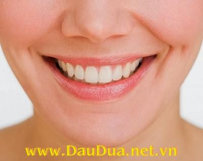 Tinh dầu dừa giúp bạn có hàm răng chắc khỏe !