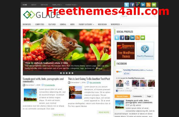 Free WordPress Grey Black Business Theme
