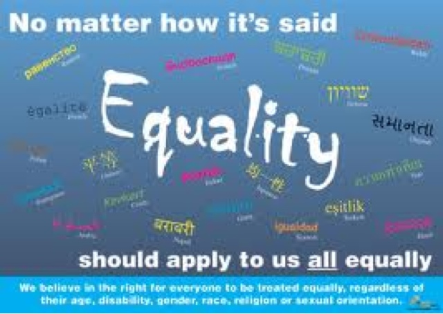 equality and diversity essay help