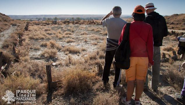 Balsas de evaporación en las Salinas de Espartinas
