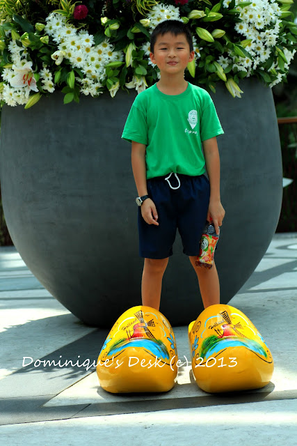 Monkey boy posing in an over-sized pair of clogs