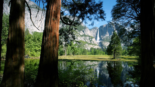 Mirrored, Upper Yosemite Falls, Yosemite National Park, California.jpg