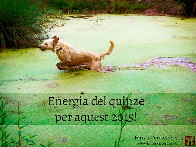 Energia del quinze : Ferran Cerdans - Llibres Artesans