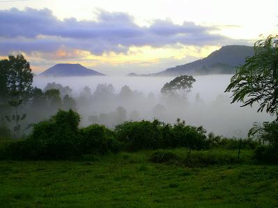 Bellbunya Mist