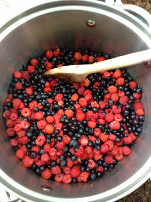 Wildberry Jam Making. Raspberries & Blaeberries.
