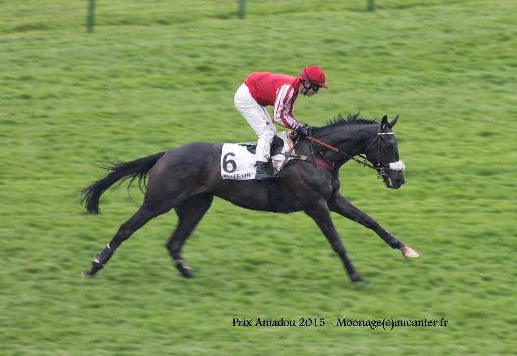 Photos Auteuil  26-04-2015 IMG_8884