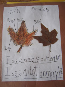 Child's drawing of a leaf with labels of leaf parts and sentences,