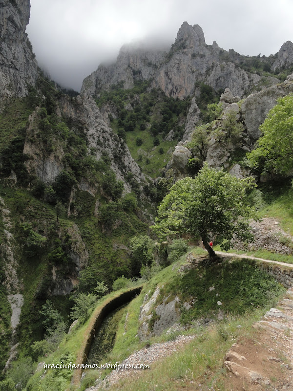 passeando - Passeando pelo norte de Espanha - A Crónica - Página 2 DSC04088