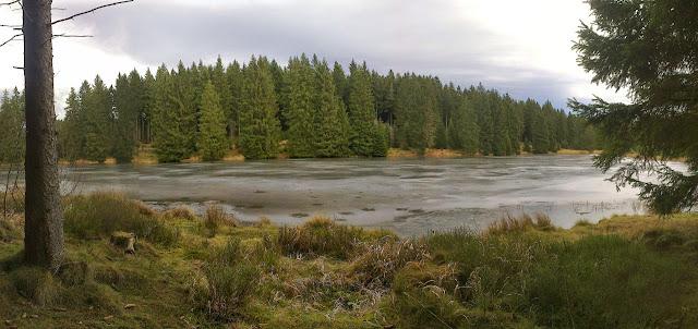 Dünne Eisdecke auf dem Bärenbrucher Teich ...