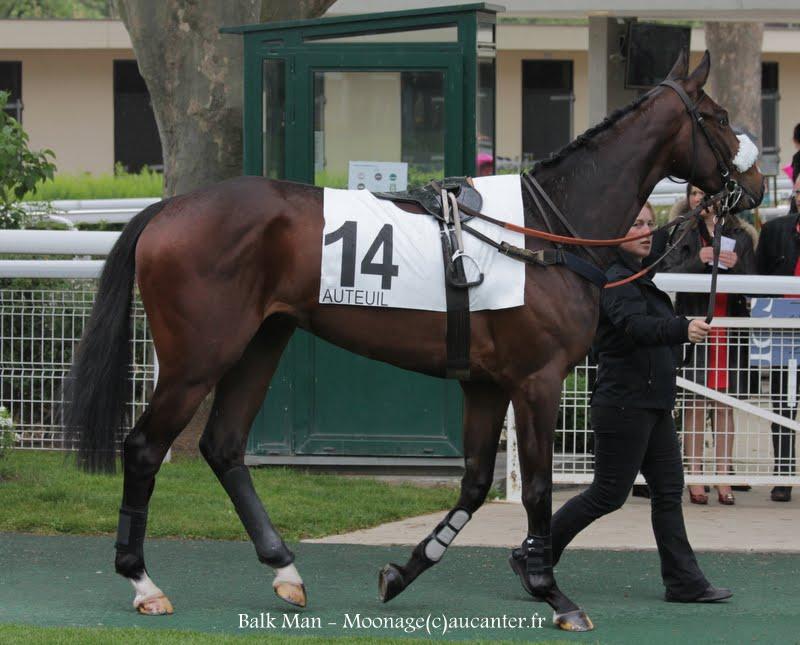 Photos Auteuil  26-04-2015 IMG_8594