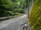 滝へ向かう林道@@@512@@@385