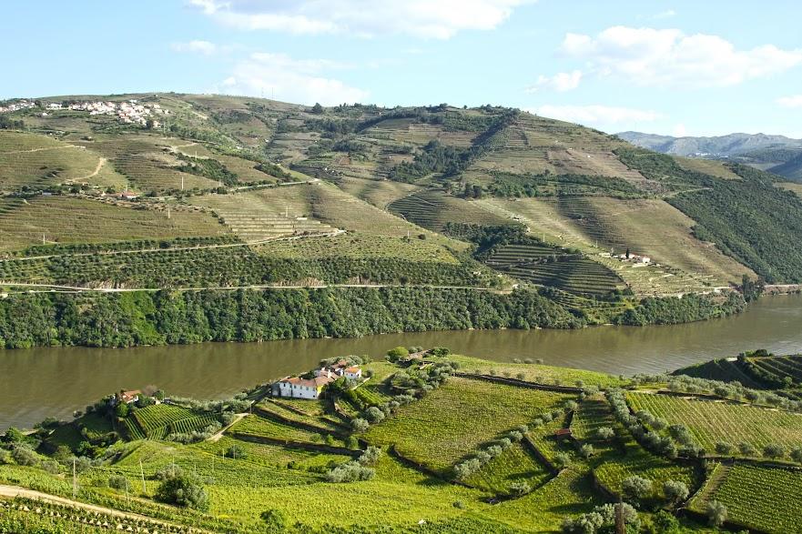 DICAS para visitar o DOURO VINHATEIRO (visitar o Pinhão) | Portugal