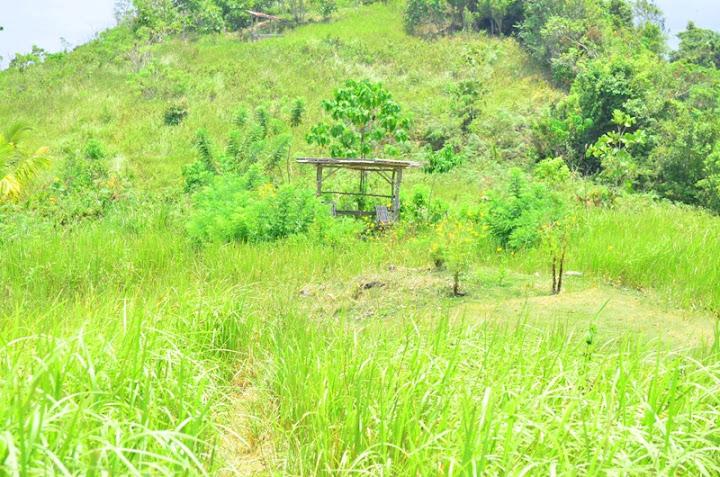 Mount Puting Bato, Samal Island