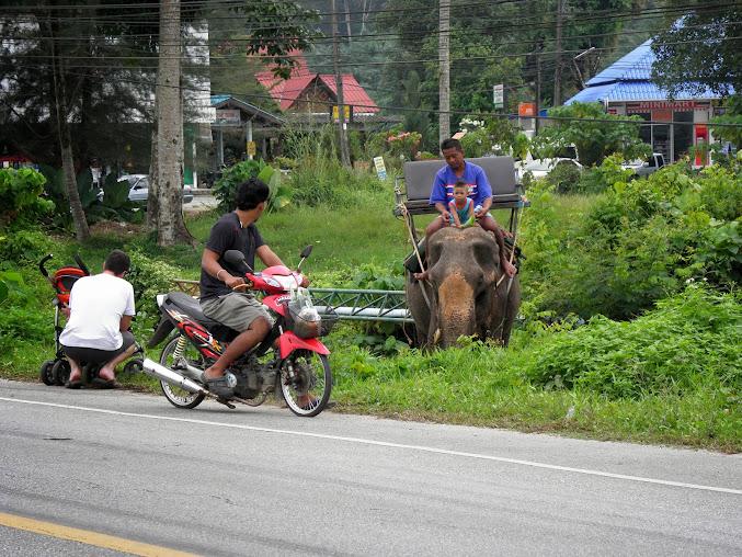 https://lh5.googleusercontent.com/-UMesi4Bh-OY/UpztBPcS1sI/AAAAAAAADlA/fnIWKFt7rug/w677-h508-no/Tajlandia+2013+230.JPG