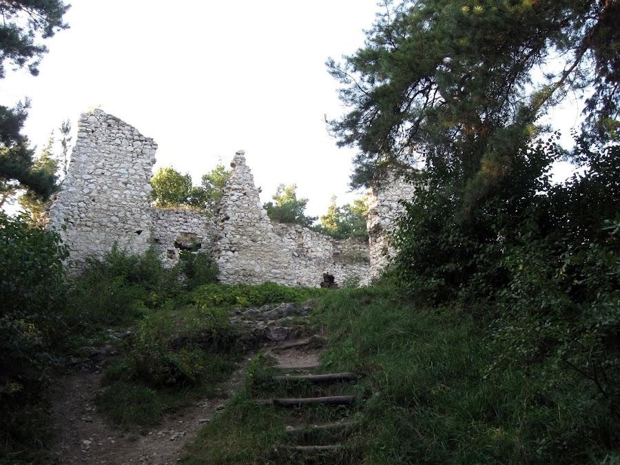 zamek bydlin - ścieżka do ruin zamku