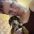 vickie martin avatar image