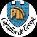 CRIADERO CABALLOSDETROYA