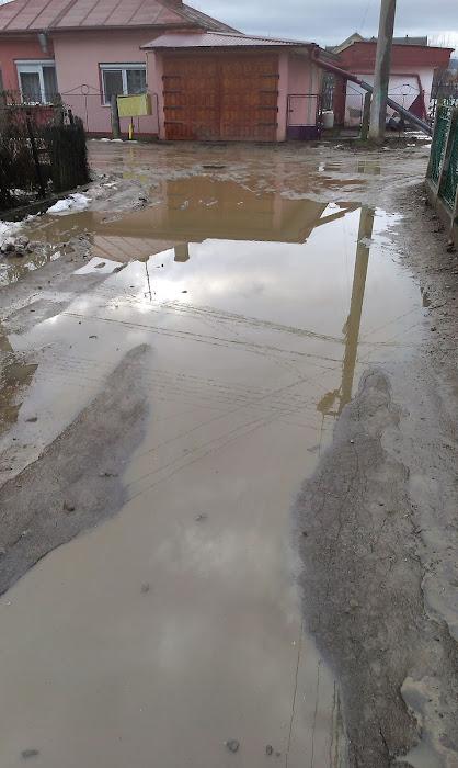 Strada Stadionului, cartierul Iţcani, municipiul Suceava
