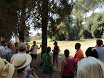 Our wonderful tour guide for the Palatine, in the shade!