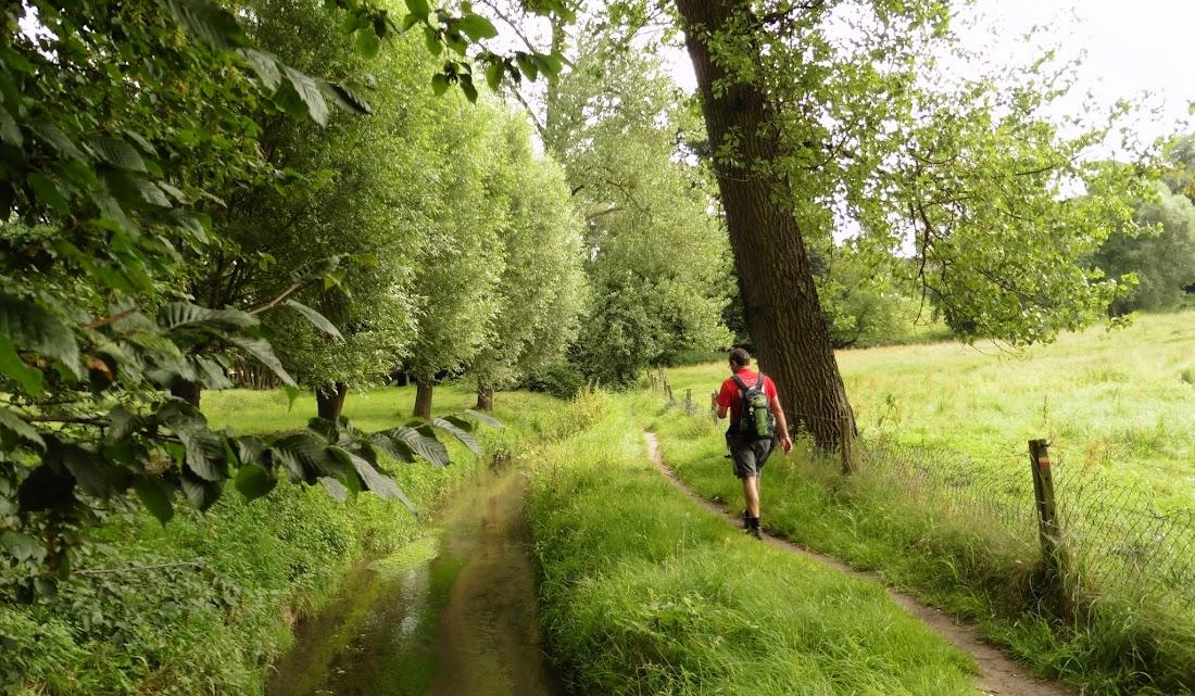 langs de Molenbeek tussen Dworp en Alsemberg