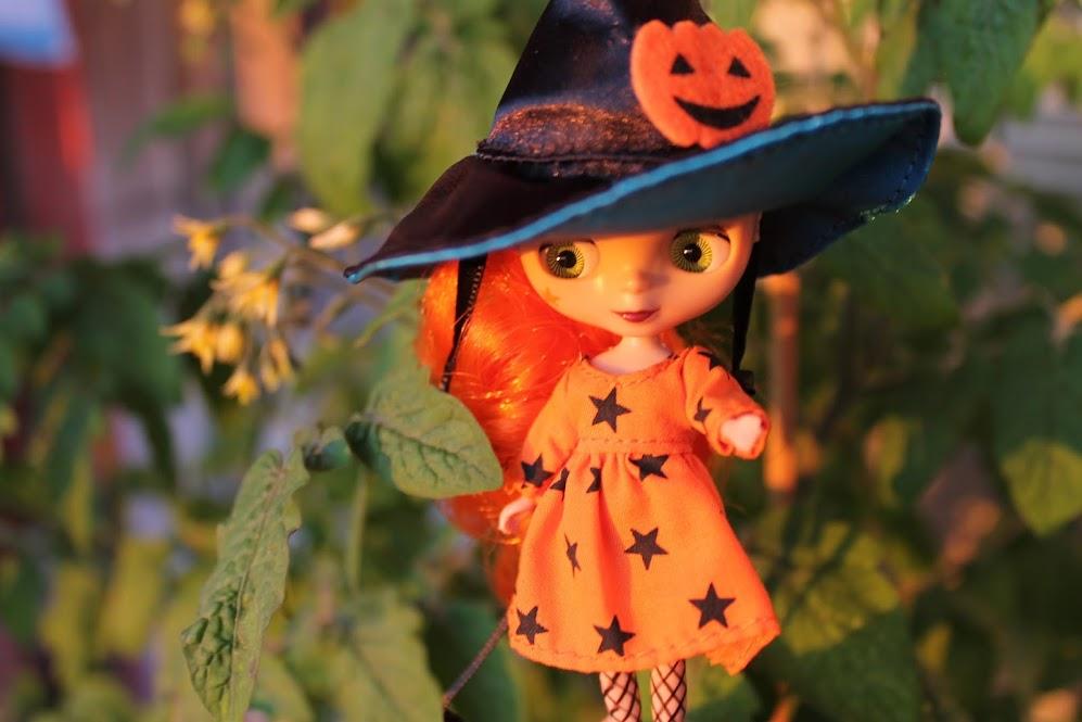 "Добрая Ведьма ""Mrs A ikdienā un svētkos"" - Page 3 IMG_1017"