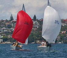 J/24s sailing under spinnakers at NSW J/24 States in Australia