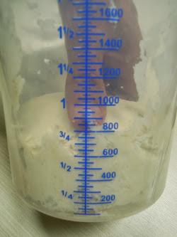 Impasto Farina di Frumento e Acqua con formazione di Glutine