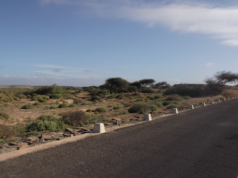 Marrocos e Mauritãnia a Queimar Pneu e Gasolina - Página 9 DSCF1047