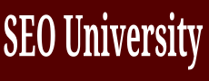 SEO University, Search Engine Optimization University