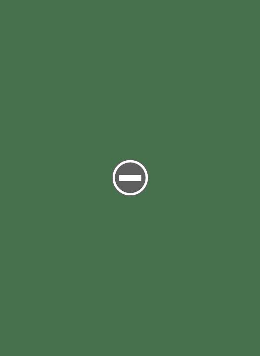 Blaireau metal TADE IMG_0378+%2528Custom%2529