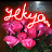 ရဲ ေက်ာ္ avatar image