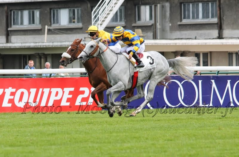 Photos Longchamp 25-05-2014 IMG_1439