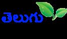Telugu Websites_Bharatiyulam