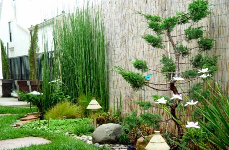 foto taman rumah gallery taman minimalis